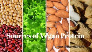 शाकाहारी प्रोटीन